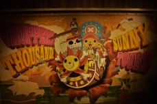 Chopper's Thousand Sunny Tour