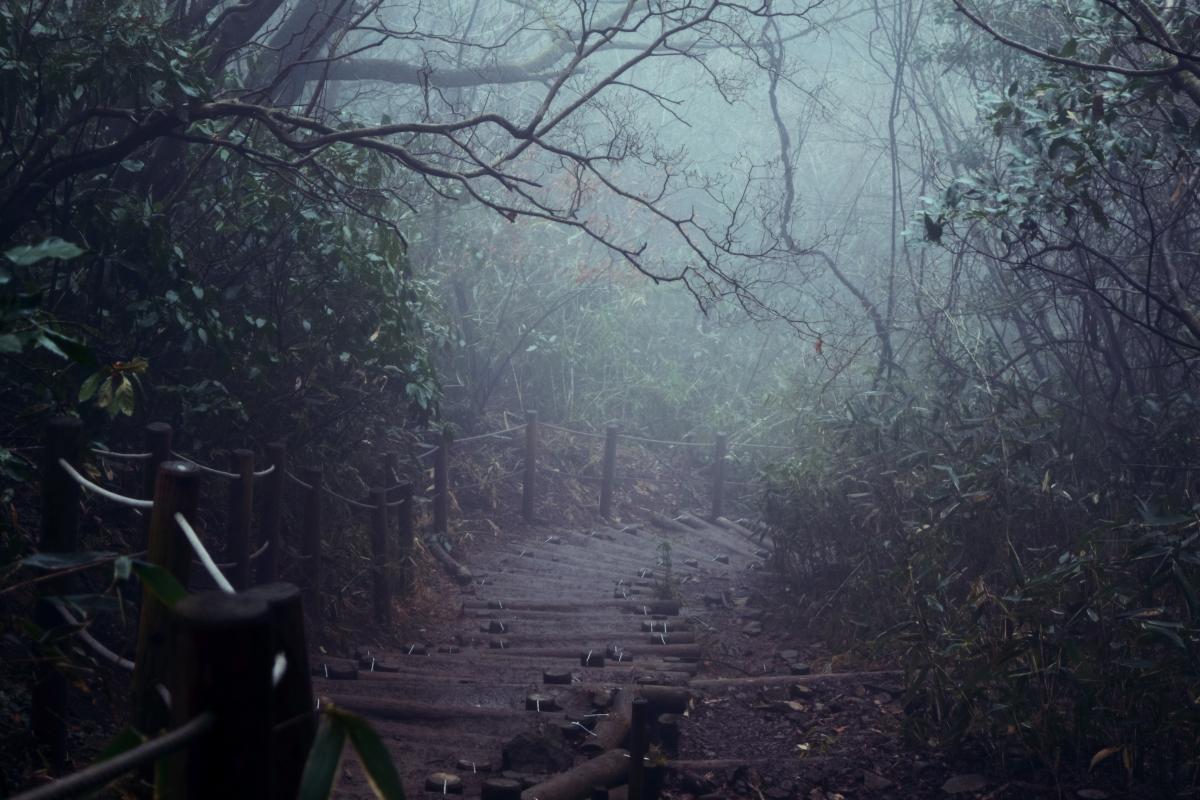 An Eerie Hike Up Mt Tsukuba