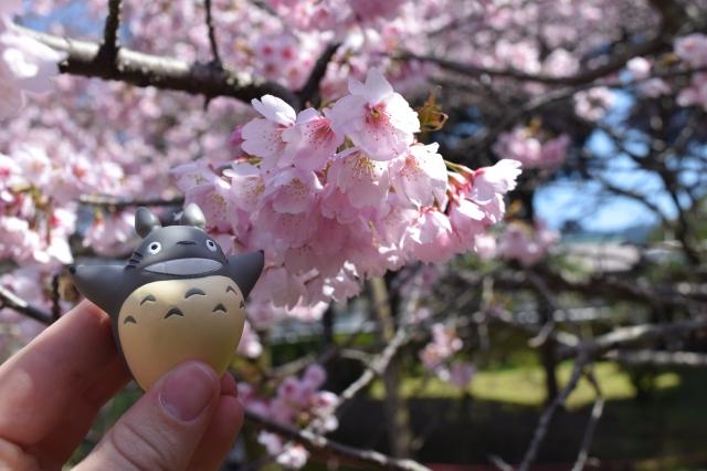 Kyoto Day 3 (277)